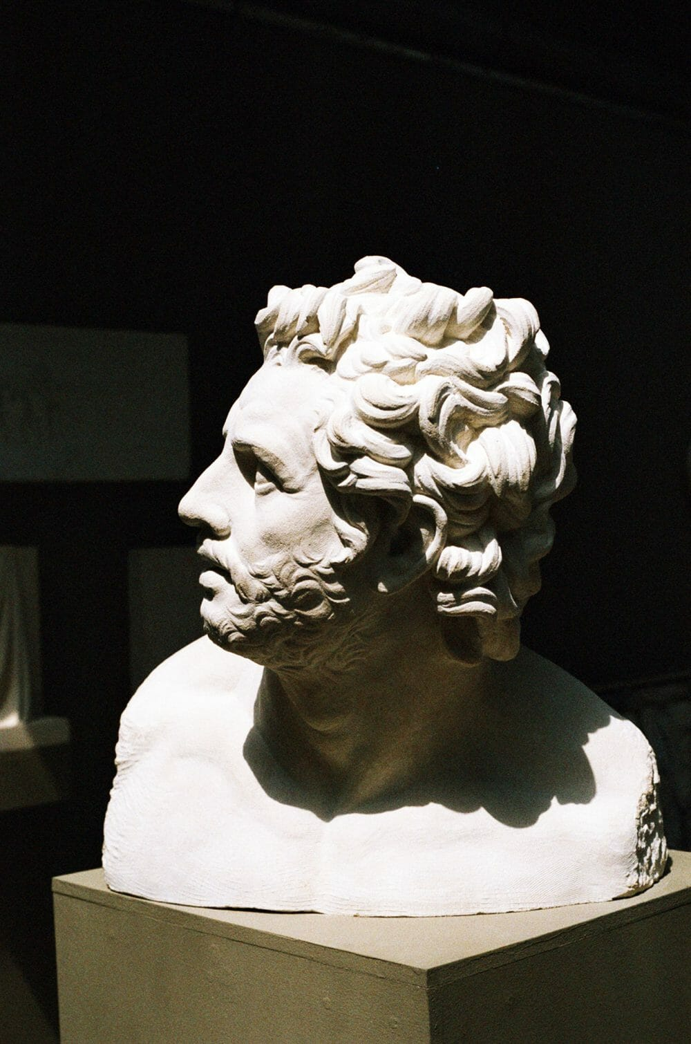 large-bust