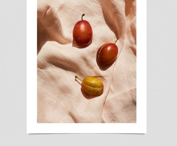 plums-giclee-print-photography-art