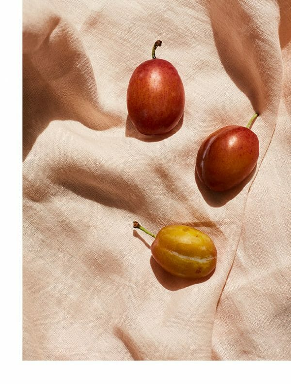 plums-giclee-print-photography-art-wall