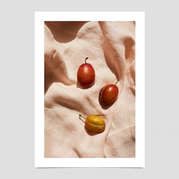 plums-giclee-print-art-photography