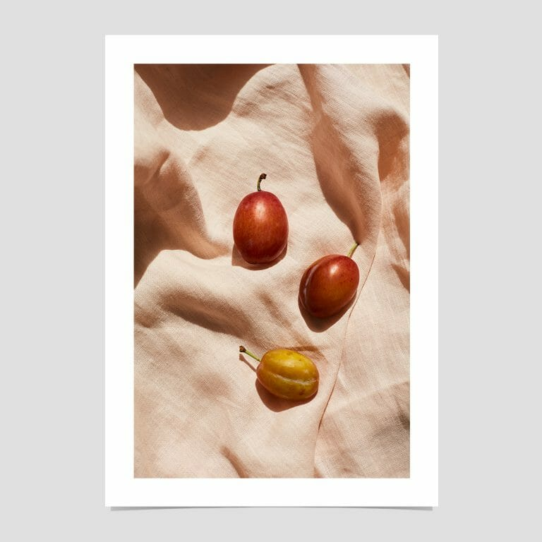 plums-giclee-photo-print-art-red-yellow-in shadowow-